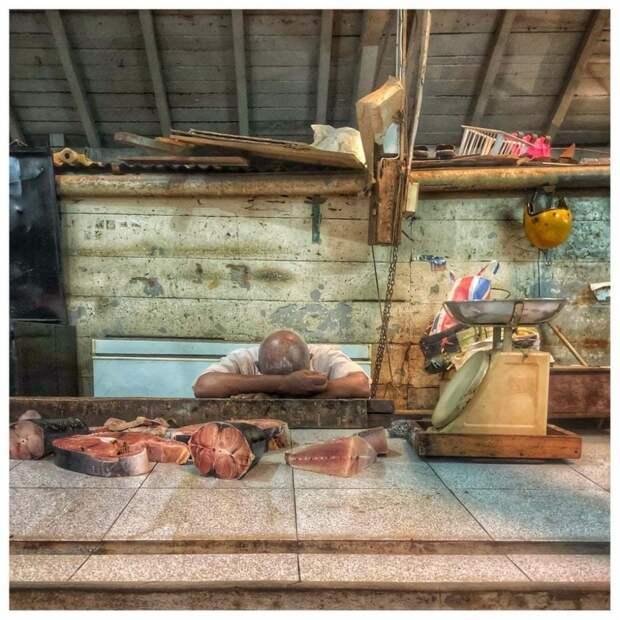 Порт-Луи, Маврикий: Наша поездка на Маврикий сопровождалась циклоном Бергуитта, вызывающим драму для всех на острове. Мы сбежали с бурных пляжей, чтобы исследовать рынки Порт-Луи, включая рыбный рынок. Фотография: Никола Янг