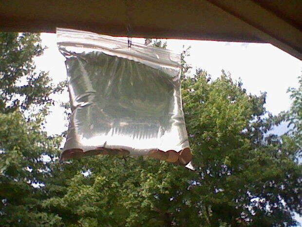 Этот простой прием с пластиковым пакетом отгонит всех мух от вашего дома Хитрость, мухи, насекомые, пакет, своими руками, секрет, совет