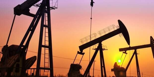 ОПЕК снизила прогноз нефтедобычи в России