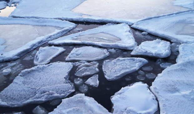 9-летняя девочка сголовой провалилась под лед наГородском пруду вЕкатеринбурге