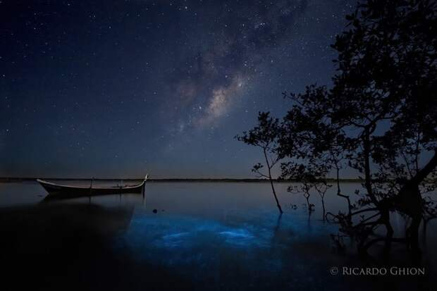 Фотограф запечатлел Млечный Путь и биолюминесцентные воды одновременно