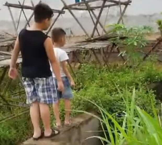 Два маленьких мальчика протягивали к утопающему щенку руки, тем самым успокаивая его