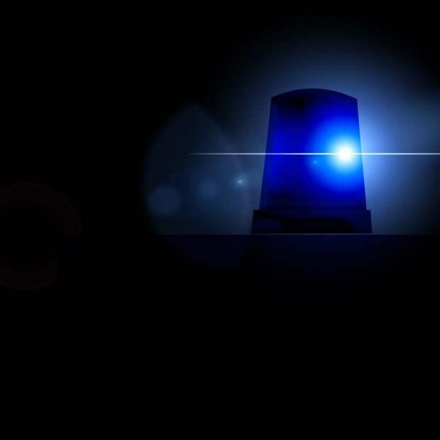 Полицейские Северного округа задержали подозреваемую в краже телефона