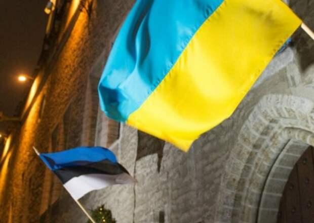 «Это не наши люди»: министр внутренних дел Эстонии жестко проехался по мигрантам из Украины