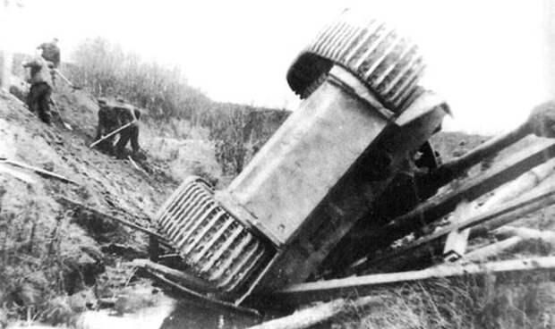 Тигр, упавший с моста. Источник: