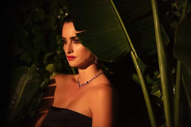 Пенелопа Крус снялась в рекламной кампании Swarovski