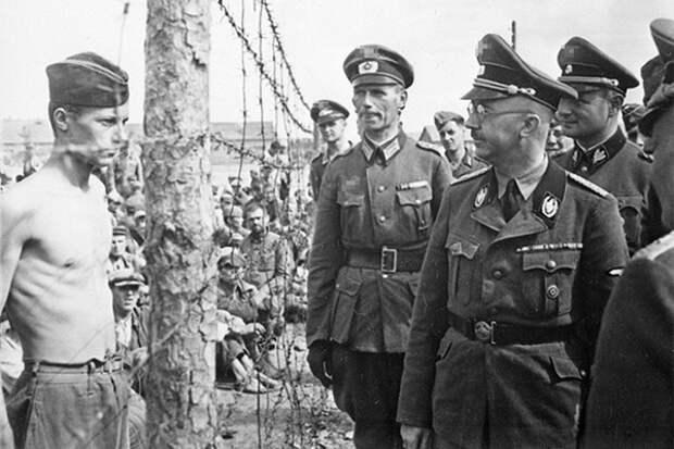 Почему немцы не соблюдали правила войны на восточном фронте