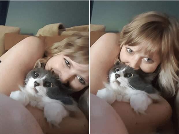 Котейки, которые терпеть не могут эти ваши поцелуйчики