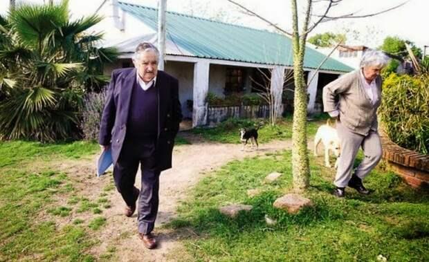 Нет, это не обычный фермер. Это беднейший президент в мире
