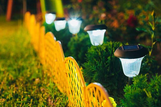 Низкие фонари внутри живой изгороди.