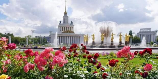 Депутат Мосгордумы Бускин: В Музее ВДНХ возобновилась акция «Бесплатные часы» для гражданс/ Фото: mos.ru
