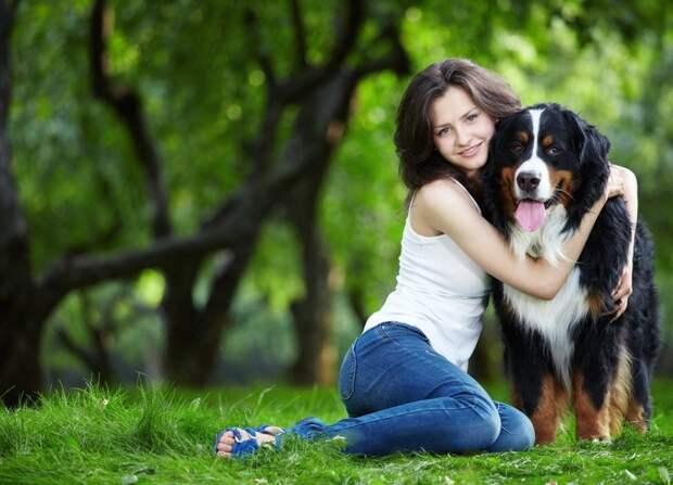 О жизни городских собачников животные, своими руками, собаки, факты