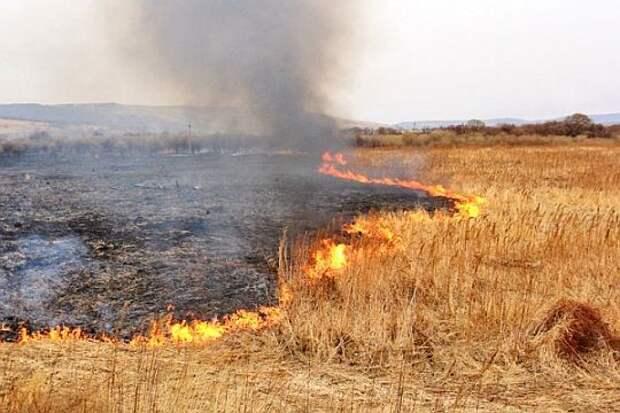 Крымским пожарным приходится ликвидировать до 50 возгораний в сутки