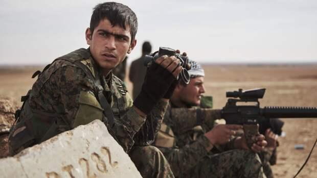 Сирия новости 20 ноября 07.00: роспуск «Правительства национального спасения», курдские боевики обстреляли школу в Ракке