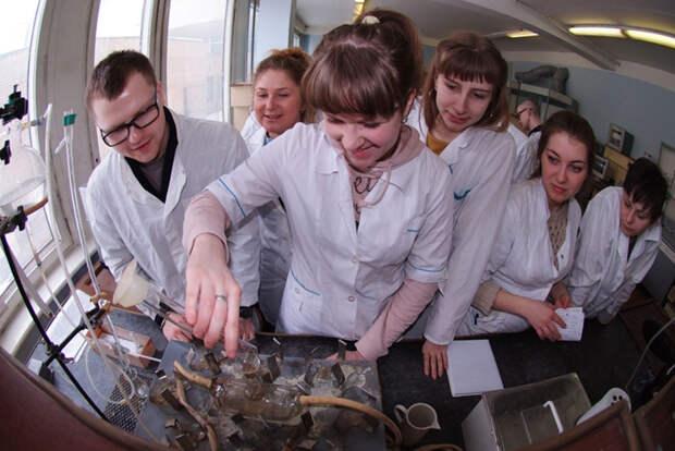 Лабораторная работа по физической химии. Преподаватель на перерыве отлучился в столовую за булочкой...