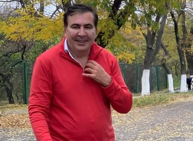 Дежа вю: Зеленский позвал Саакашвили в правительство Украины