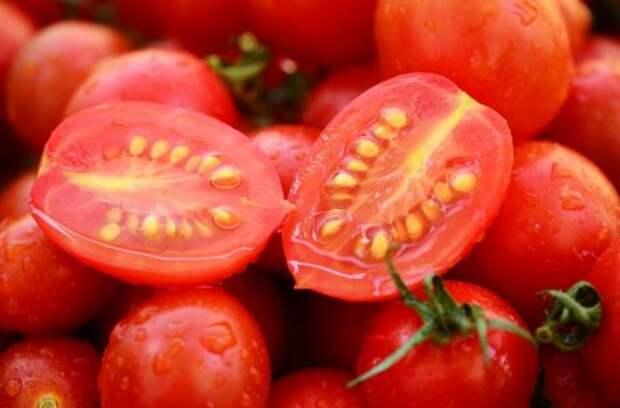 Как правильно собирать семена разных растений