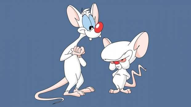 Пинки и Брейн возвращаются в ремейке «Озорных анимашек»