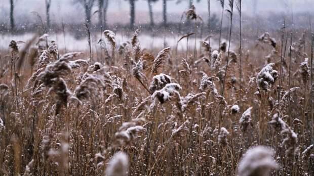 Циклон принес в Хабаровск минусовые температуры и первый снег