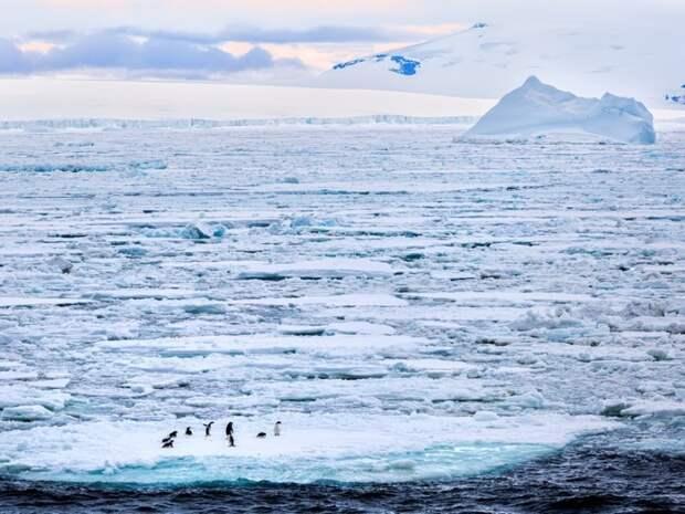 Почему нельзя купаться в самом чистом море на планете