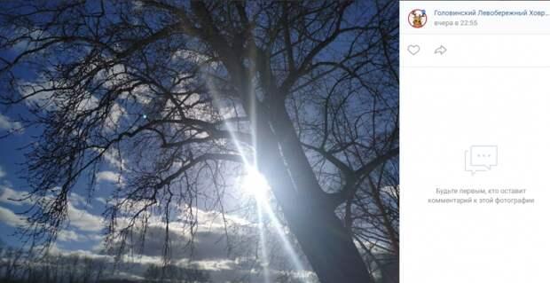 Фото дня: первые лучи весеннего солнца