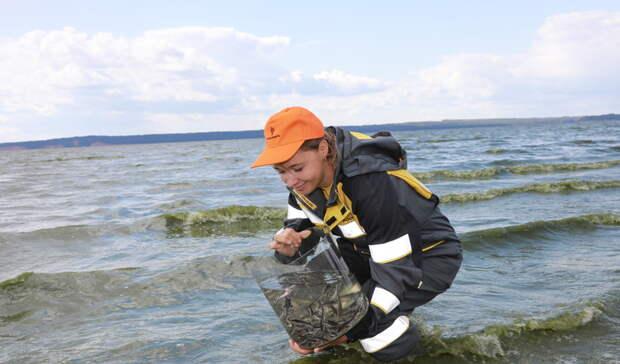 «Удмуртнефть» выпустила 24 тысячи мальков стерляди в Воткинское водохранилище