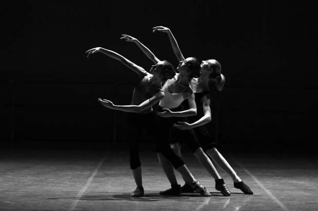 Воспитанники студии балетного искусства дадут отчетный концерт в Северном Фото с сайта pixabay.com