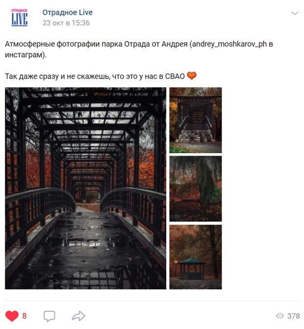 Осенняя атмосфера парка Отрада впечатлила фотографа