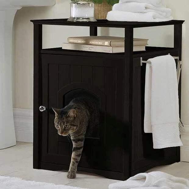 cathouse10 Дизайн для котов