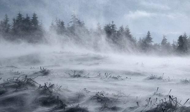 Крым в ближайшие 7 дней ожидает аномально холодная погода