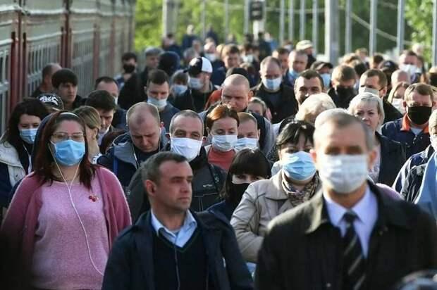 Вирус как индикатор свободы общества