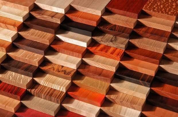 Экзотические виды древесины - их великое множество: бамбук, венге, кемпас, айпе, мербау, кумару, сапелли, оливковое дерево, сукупира, тик, ятоба, морадо, падук и другие. деревья, древесина, интересное, природа, факты