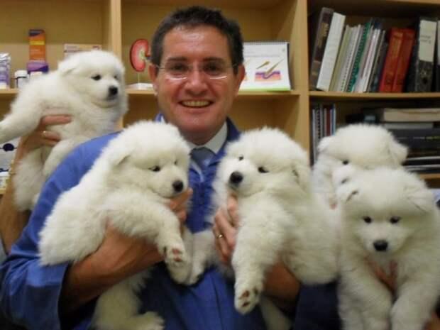 20 милых доказательств того, что ветеринар — это улетная профессия