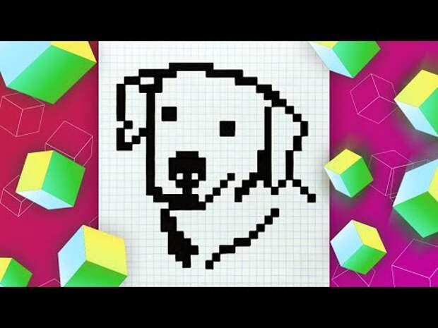 Собака по клеточкам l Как нарисовать собаку в тетради по клеточкам l Pix...