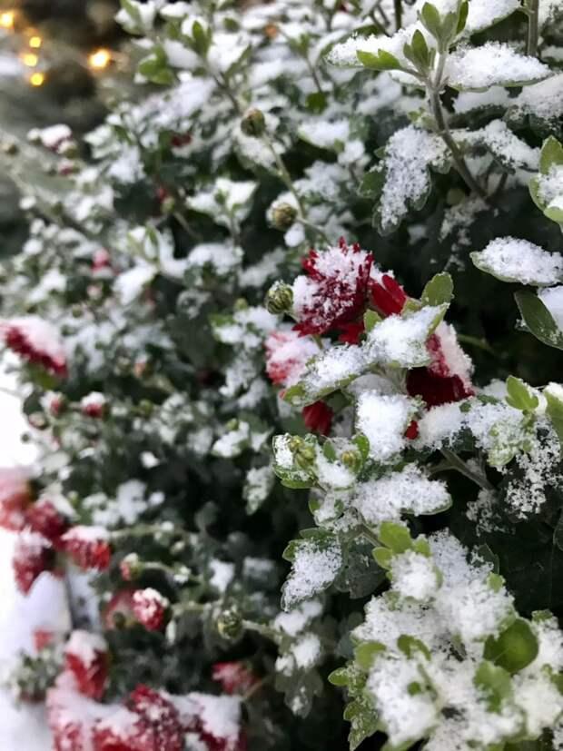 Когда крымчане дождутся снежной зимы