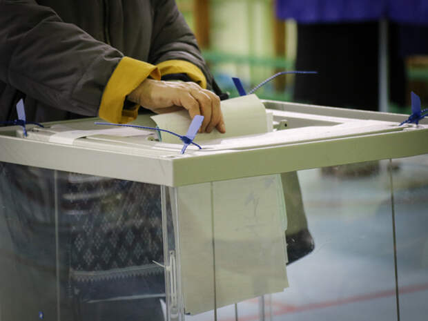Гражданка России Юлия Ильинская, живущая в Израиле, смогла дважды проголосовать на выборах в Госдуму