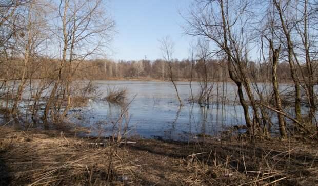 Вближайшие часы вОренбуржье ожидают начало весеннего паводка