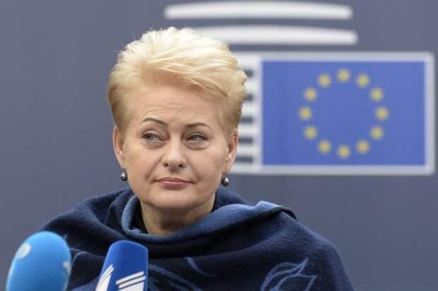 Президент Литвы Даля Грибаускайте, фото с сайта geoenergetics.ru