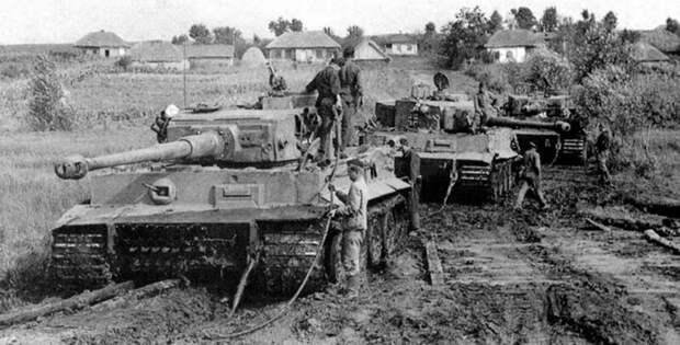 Джунгли для «Тигров» и «Пантер».Почему немецкая техника оказалась не готова сражаться с СССР война, танки, фашисты