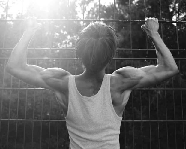 Ученые рассказали, как мышцы и жир работают на благо друг друга