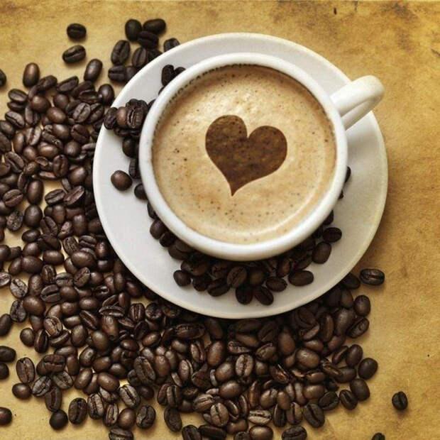 Интересная информация о кофе, которую вы скорей всего не знали