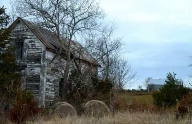 Это одна из немногих оставшихся ферм в США. В американской глубинке такая же разруха, как и в российской