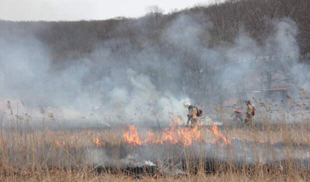 С 20 апреля в Оренбуржье официально начинается пожароопасный сезон