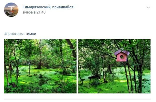 Фото дня: Тимирязевские джунгли
