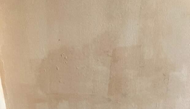 В подъезде дома на Заповедной закрасили вандальные надписи