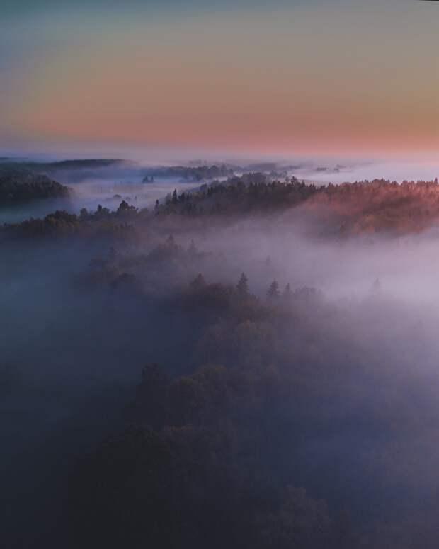 Неповторимая природа Литвы на снимках Гиедры Бартас