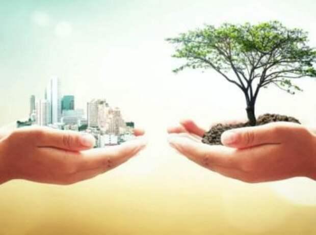 """Экология как тренд - будущее за """"зеленой"""" экономикой?"""