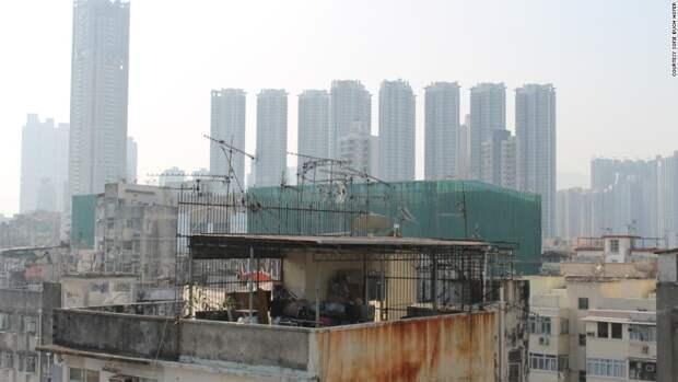 7 мрачных фото трущоб на крышах небоскребов в Гонконге