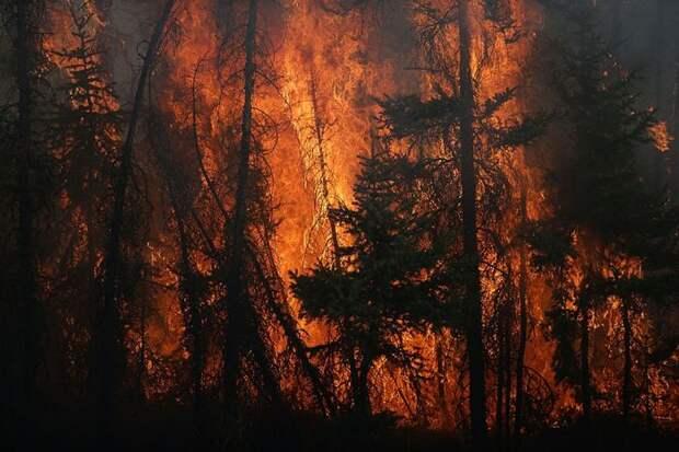 Лесной пожар приблизился к трассе Пермь — Екатеринбург