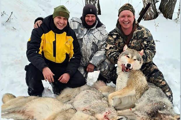 Курганского депутата-единоросса обвинили в жестоком убийстве волка